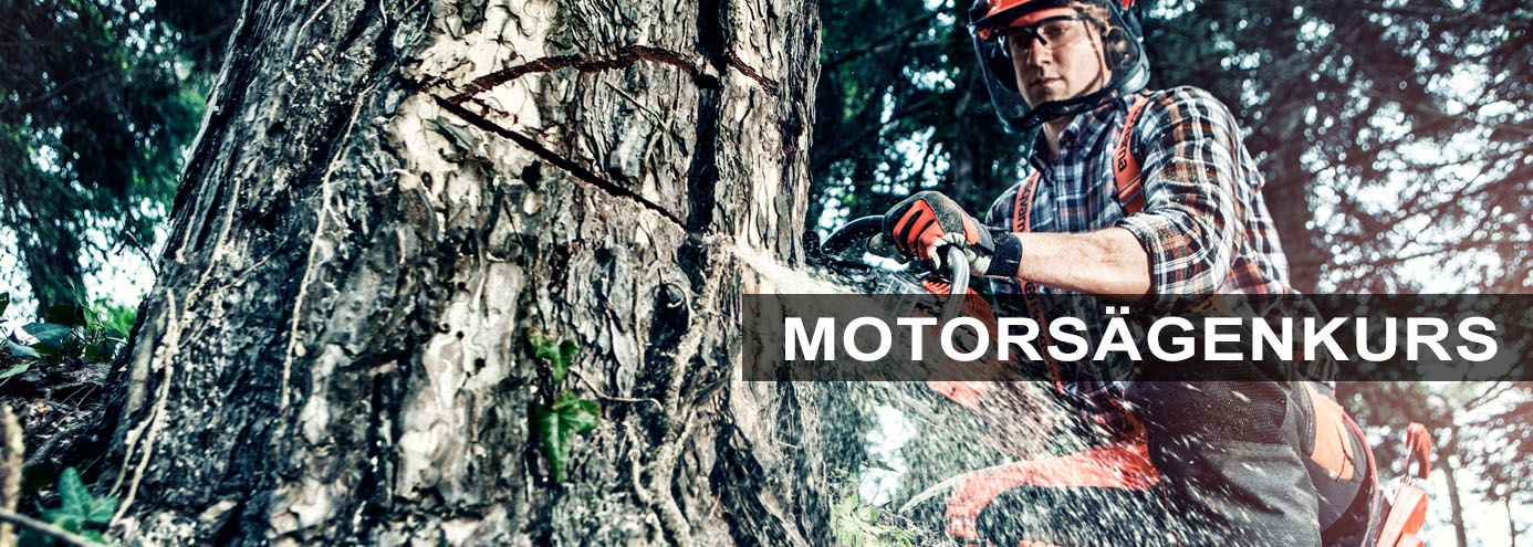 Boerger-Motorgeraete-Harz-Gartentechnik-Forsttechnik-Husqvarna-Motorsaege-Kurs